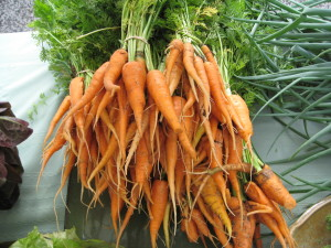 Carrots at Choice Roots in Central, Illinois, grown chemical-free.
